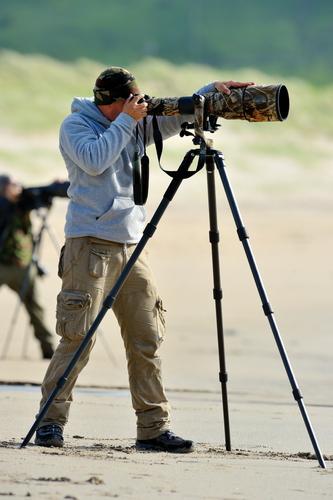 Become a Wildlife Photographer